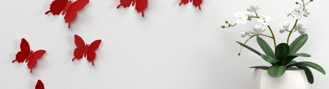 Cómo colocar un vinilo decorativo en una pared